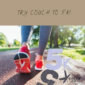 Jogging with a border collie using couch to 5k app