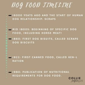 Dog food history timeline